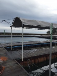 海上釣り堀 自主機械警備システム